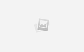 Какую пользу для здоровья приносит спорт. О пользе физкультуры и спорта